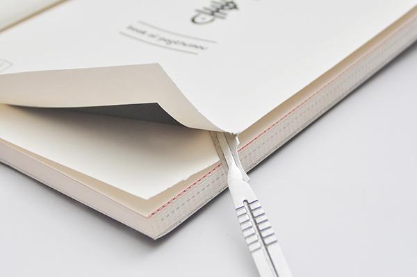 Best Editorial Design China: Noyau